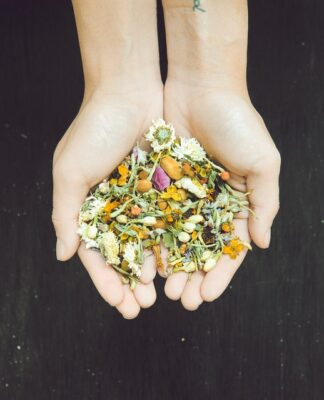 Dłonie na których leżą kwiaty i zioła