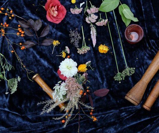 Kwiaty i zioła na ciemnej tkaninie