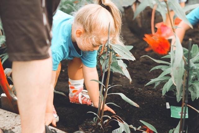 Dziewczynka sadząca kwiaty w ogrodzie