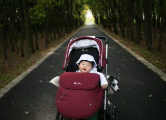 Dziecko w wózku spacerowym i pies.