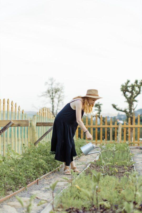 Dziewczyna podlewająca swój ogródek warzywny